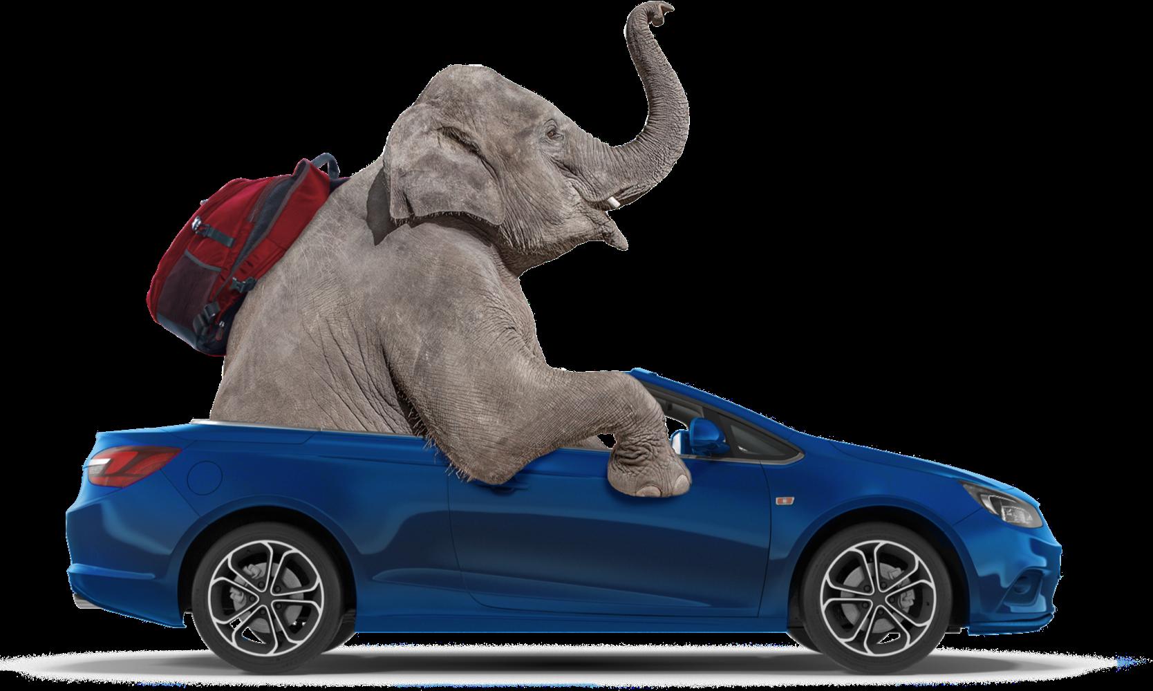 elephant auto insurance commercial girl